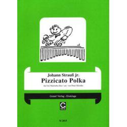STRAUSS Johann jr. : Pizzicato Polka (arr. P. Klemke)